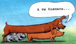 Трейдер псков